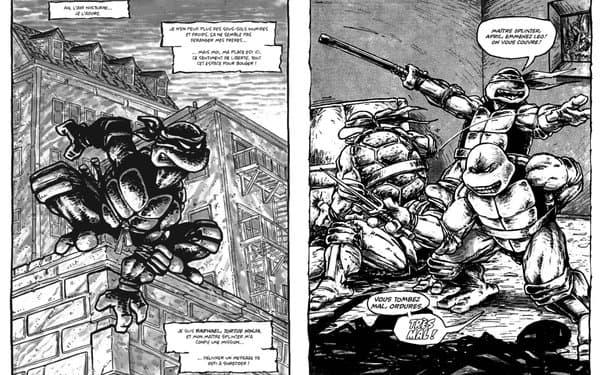 """Les Tortues Ninja """"en mode punk"""" dans les années 1980"""